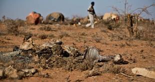 UNICEF alerta: Niños al borde de la muerte