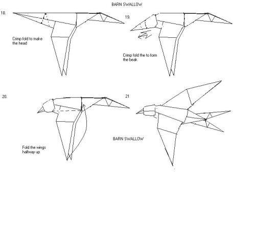 barnswallow3[1]