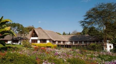 12 day safari vacation TANZANIA Great Migration Crossing, Wildlife & Cultural Immersion (4)