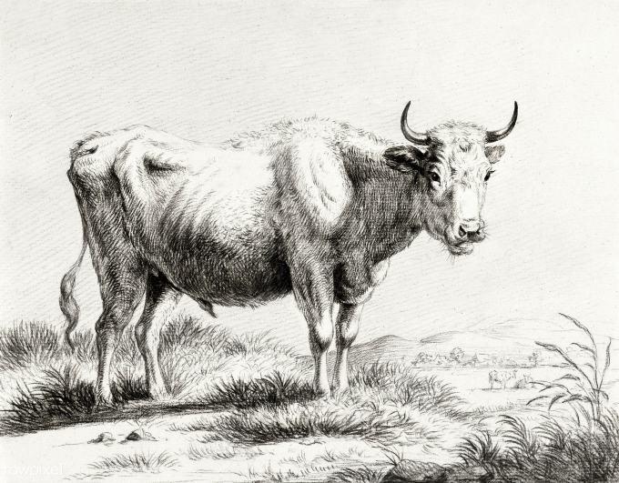 pd21batch1-rp-t-1904-358-jj