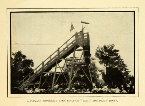 1908-halftone-print-of-the-famous-amusement-park-attraction-at-luna-park-on-coney-island-king-the-diving-horse
