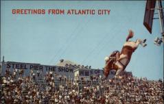 Diving Horse at Steel Pier Atlantic City