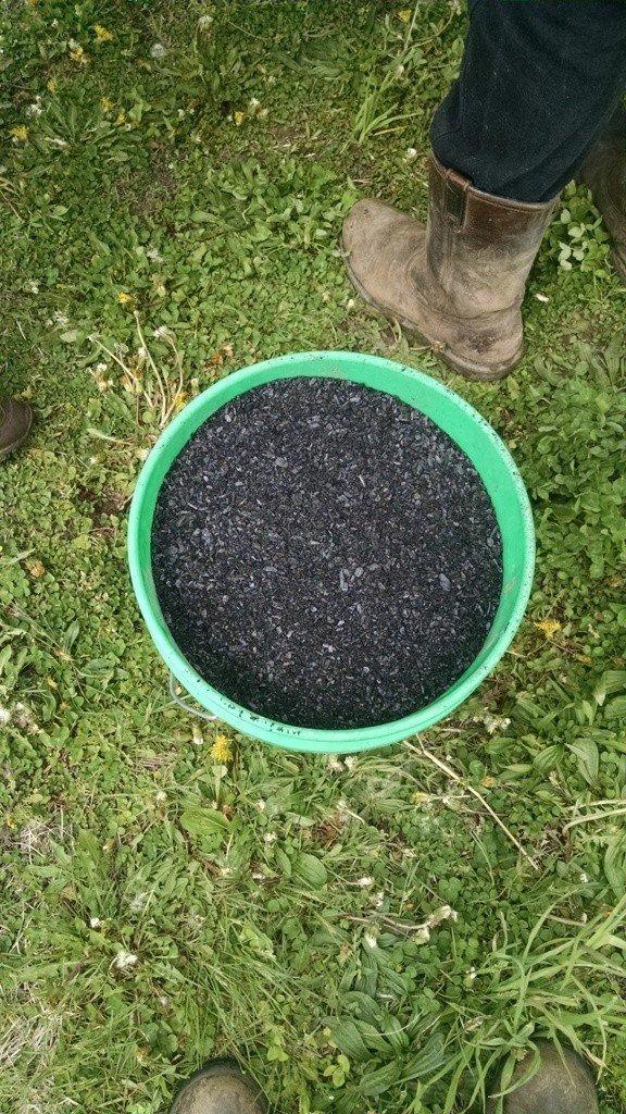 Bucket of Biochar (resized)