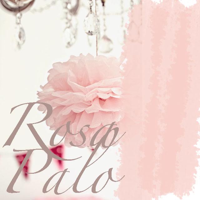 Rosa palo, portada