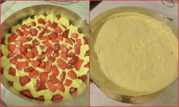 fraisier etp20