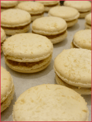 Macaron bounty ETP10