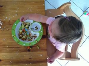 "Das Experiment des ""Authoritative Feedings"""
