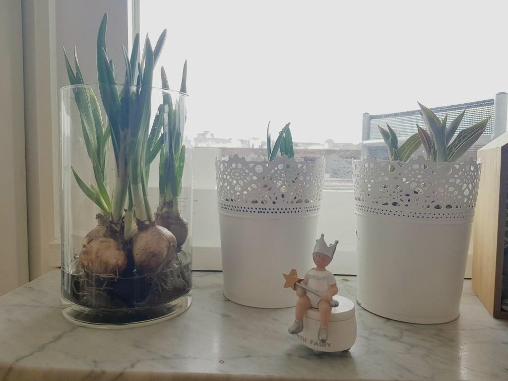Wochenende in Bildern, Perlenmama, Frühlingsblumen, Frühlingsdeko