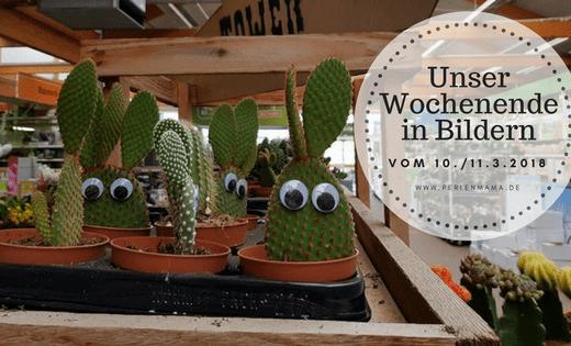 Perlenmama, Wochenende in Bildern, Obi, Baumarkt, Kakteen, Kaktus, Wackelaugen