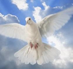 Wołanie do Ducha Świętego!