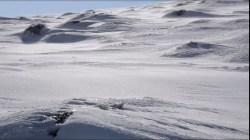 Zimny wiatr Antarktydy!
