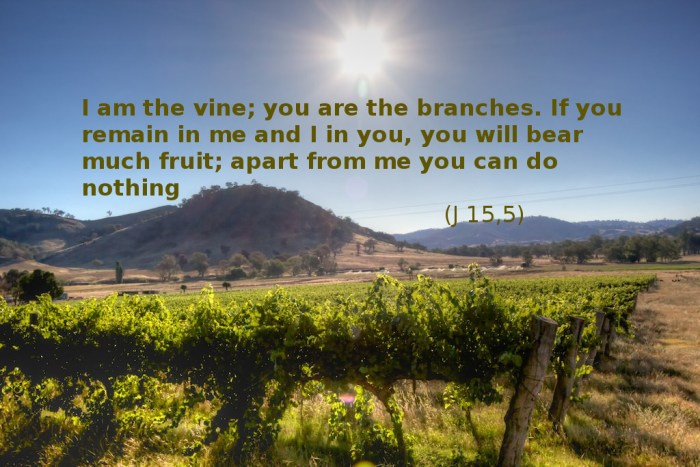Jesus told us what is a key to fruitful life!