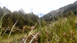Podziwiamy nieskażoną przyrodę  gór!