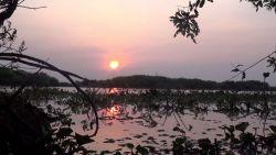 Orkiestra wschodu Słońca nad jeziorem