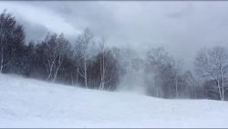 Zima staje się rarytasem… Portal do prawdziwej:)