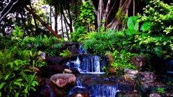 Bajkowy wodospad w dżunglii