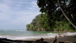 Karaibska plaża w Kostaryce!