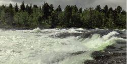 Nad brzegiem norweskiej rzeki
