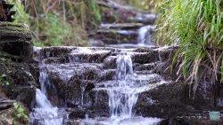 Mikro wodospady i głosy natury