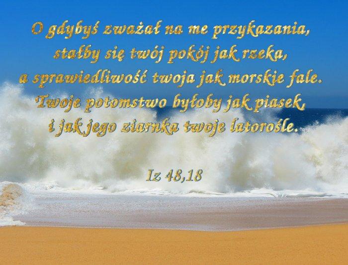 Jam jest Pan, twój Bóg, pouczający cię o tym, co pożyteczne, kierujący tobą na drodze, którą kroczysz.
