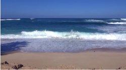 Hawaje, plaża i … dziwni poszukiwacze.