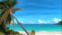 Kojące fale w tropikalnym raju