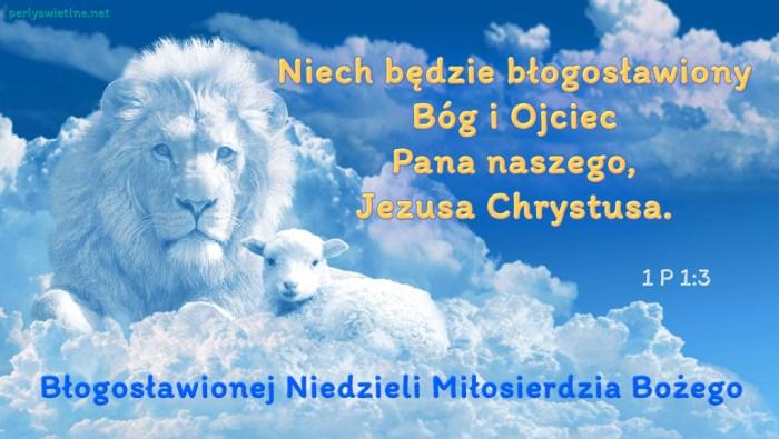 Niech będzie błogosławiony Bóg i Ojciec Pana naszego, Jezusa Chrystusa.