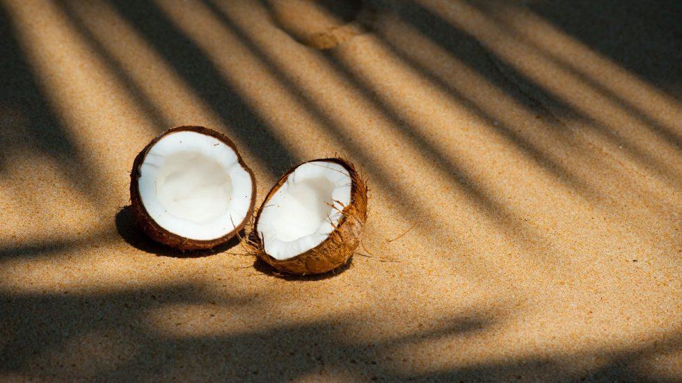 beach coconut delicious food