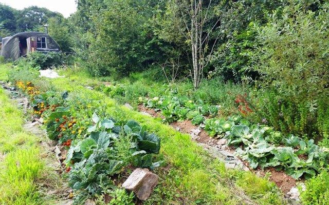 Creare paradisi con la permacultura