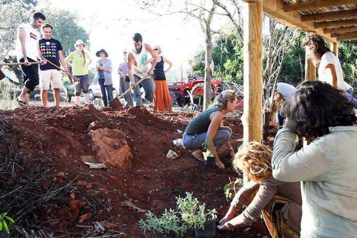 Studenti di Progettazione in Permacultura in Portogallo