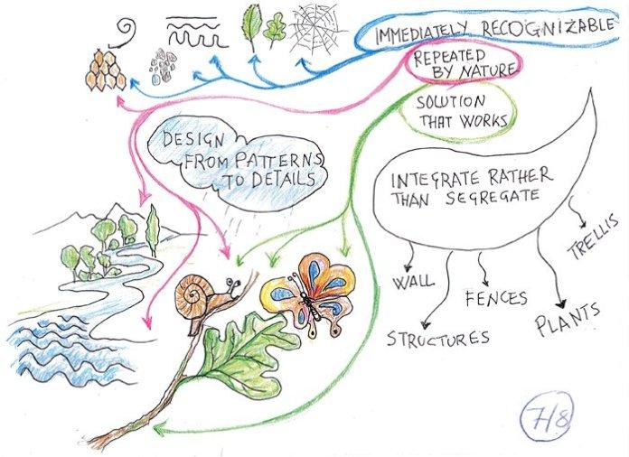 patterns permacultura guglielmino