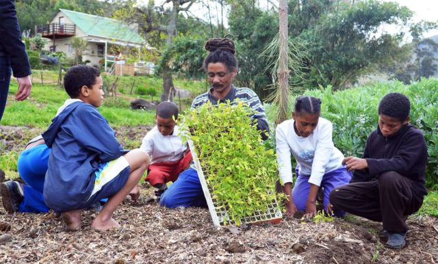 permacultura transizione greyton