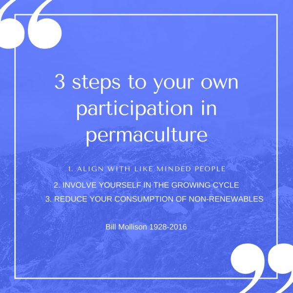 3-steps-to-our-own-participation-1-600x600