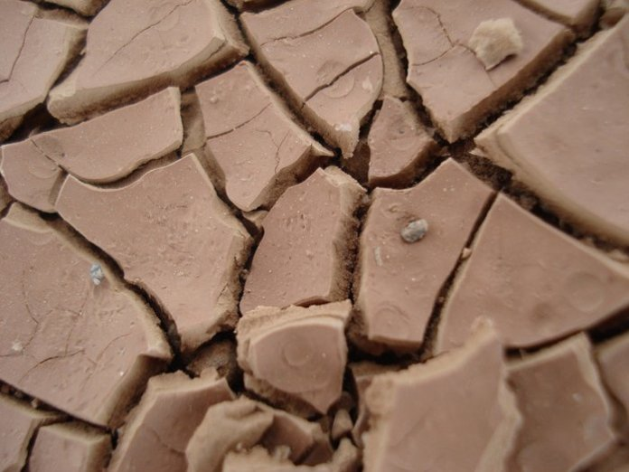 suolo argilloso permacultura