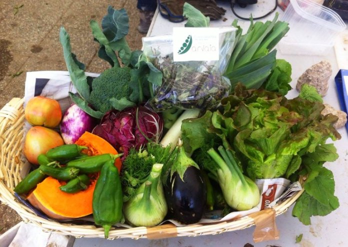 Il socio Vito ha composto un piatto con le verdure del momento. Arte naturale...Fonte Pagina Facebook di Arvaia