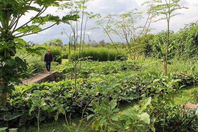Gautier Gras agricoltura rigenerativa