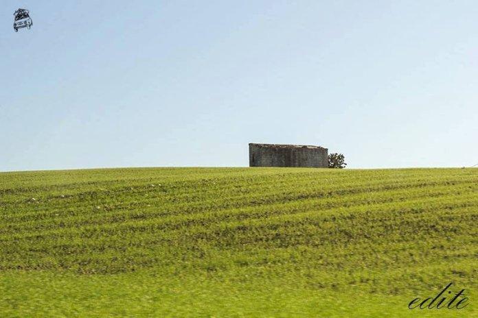 terreno agricolo osimo