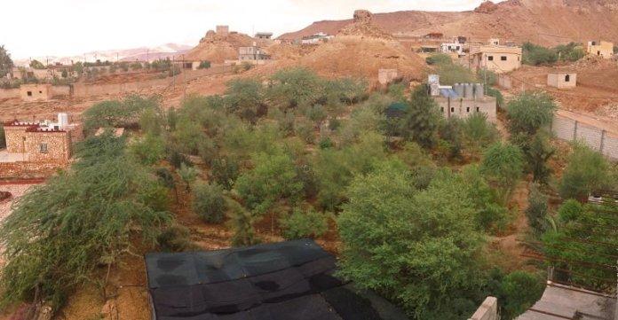 Giordania Green the desert