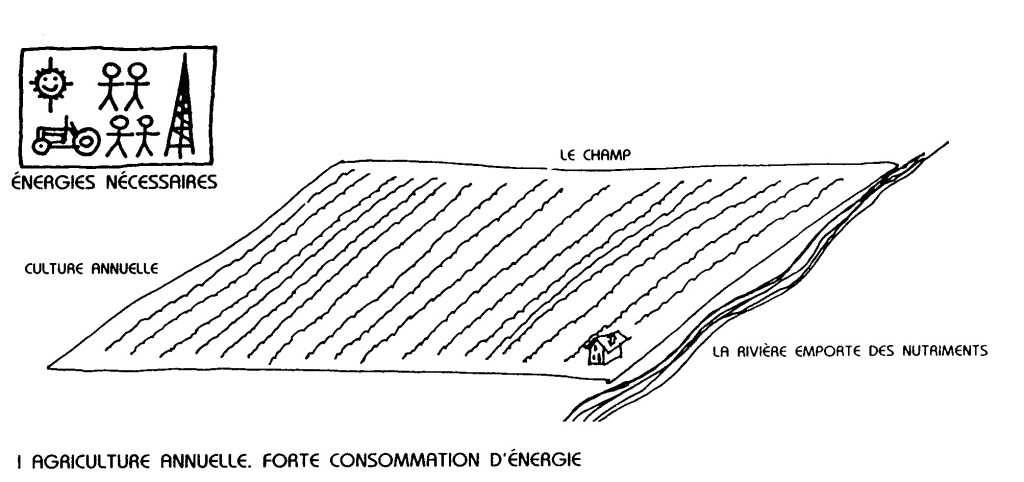 Permaculture: un guide complet [PDF]