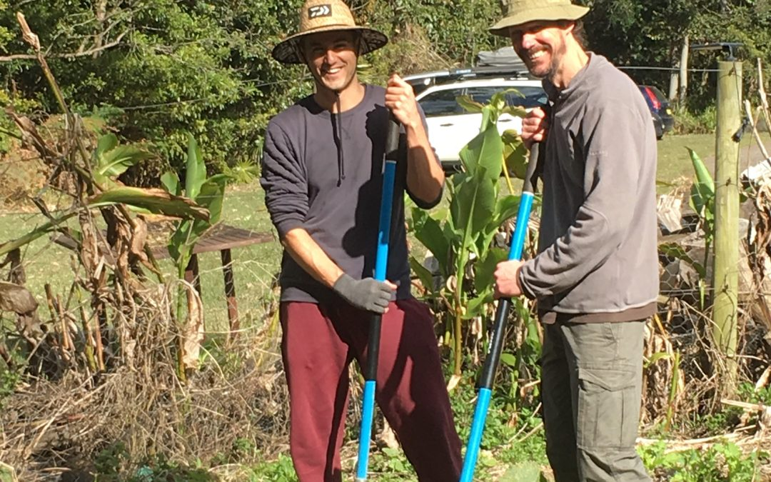 Permaculture Design Course (PDC) with Permacoach and Eagle Ridge: Part time on weekends