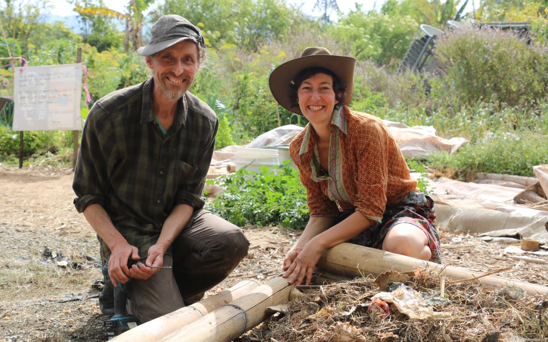 AHC42116 – Certificate IV in Permaculture
