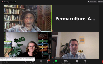 What does effective permaculture aid look like?