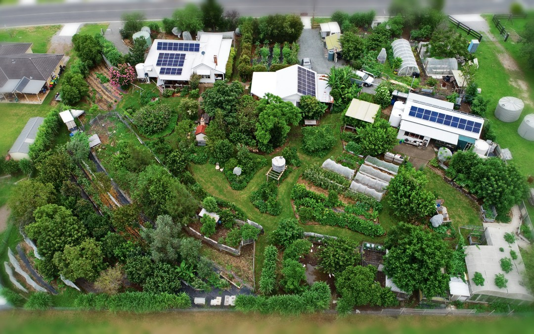 PDC Winter 2021 > Protracted 14 day Permaculture Design Course over 3 months