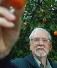 Bob Randall