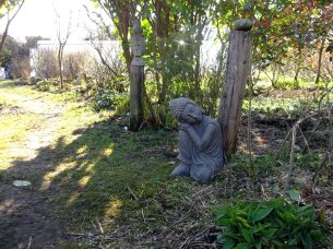 Buddha under the Laurel arch at Bealtaine Cottage permaculture gardens