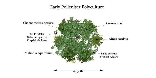 Early Polleniser Design - 20 m2