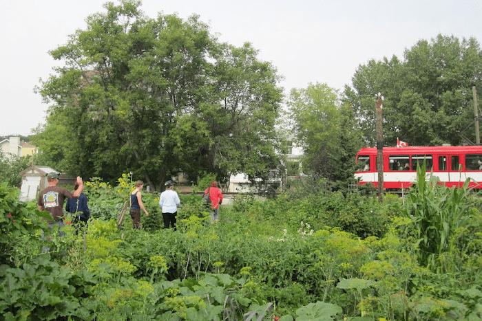 Strathcona Rail Gemeinschaftsgarten
