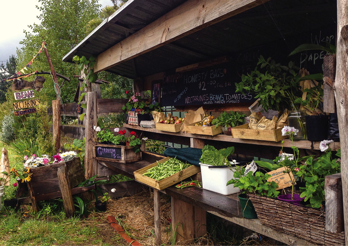 Permaculture Design Principle 6: Produce no waste on Backyard Permaculture Design id=40133