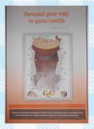 fermenting food book