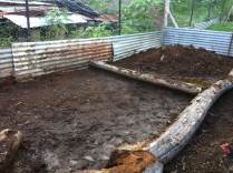 Shoveling cow manure from the biodigester at Maungaraeeda, permaculture on the Sunshine Coast